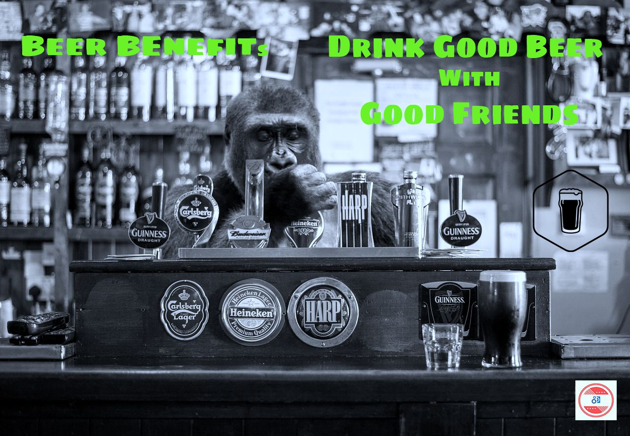Benefits-Of-Beer