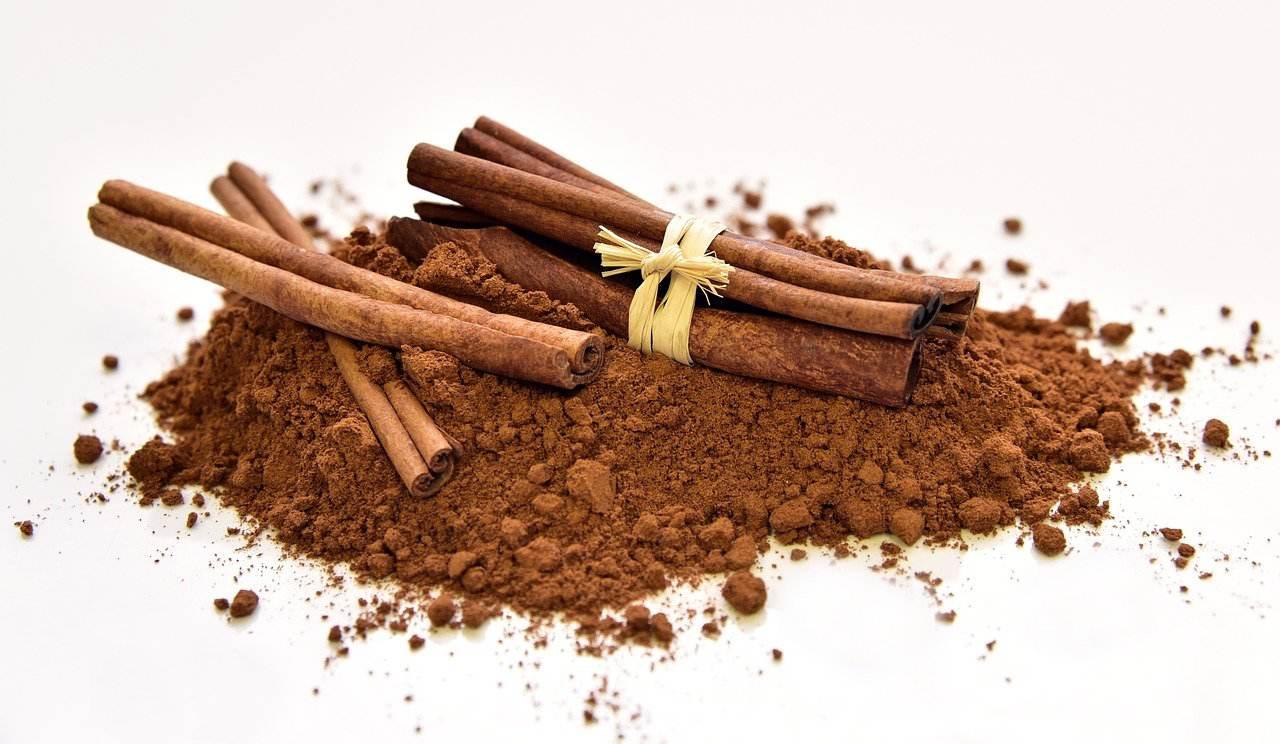 cinnamon dalchini